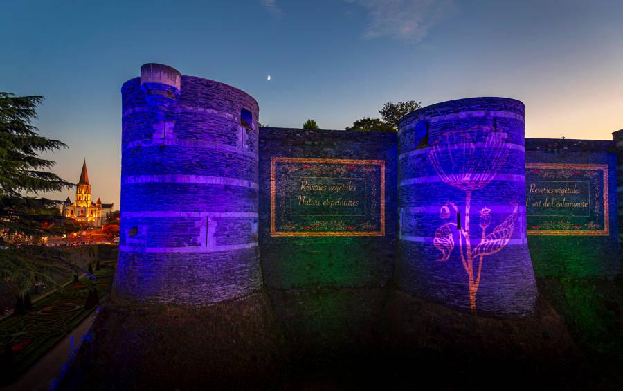 Angers - Les lumières du château